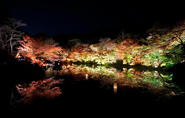 【紅葉ドライブ】九年庵と御船山楽園 『紅葉まつり』